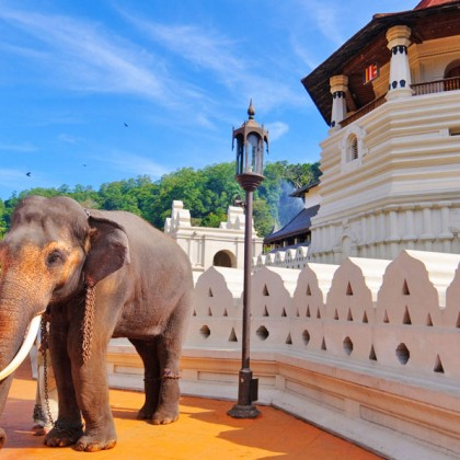 visit-our-lanka.com-7-days-tour-package-2