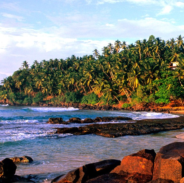 visit-our-lanka.com-8-days-tour-package-2